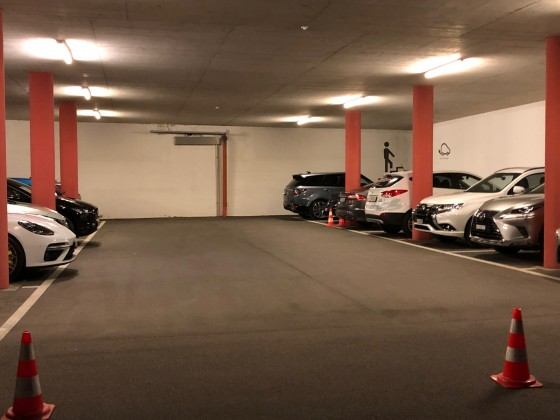 In der Garage die Hybrid Fraktion
