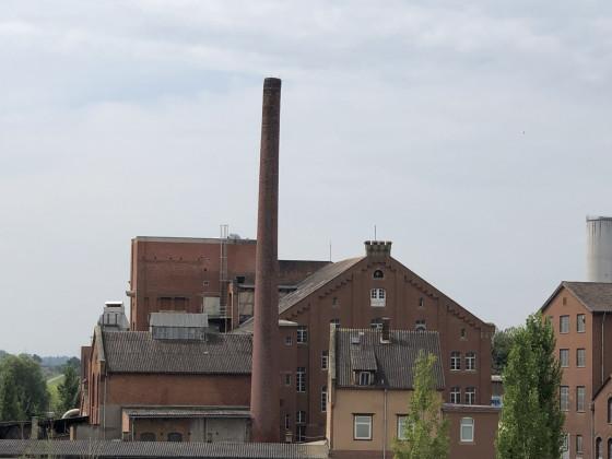 Heilbronn mit großem Spielzeug für Frauen