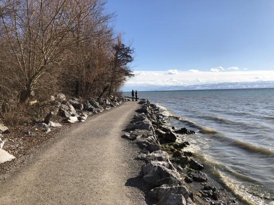 NORD(liches)SEE Ufer bei Sturm
