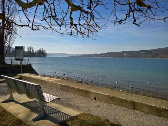 Vom Bodensee in den Rhein